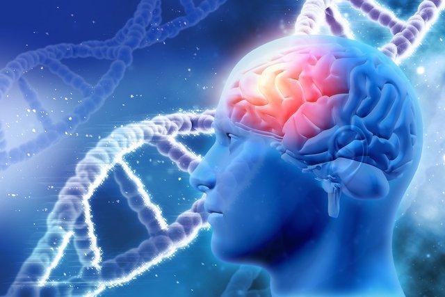 0x0-kadin-ile-erkek-arasindaki-bilimsel-farklar-1491891968884